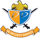DD Security Service